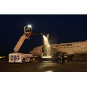 Series 3800 deicing system